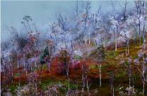 长白山岳桦林